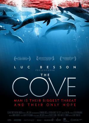 TheCove2